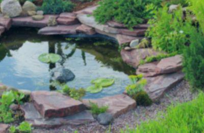 Pond & Water Feature Repair & Maintenance