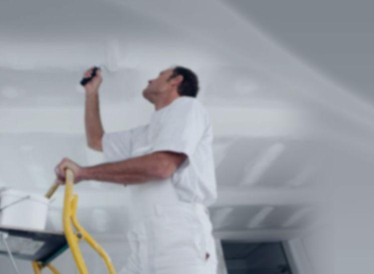 Drywall & Plasterboard Installation