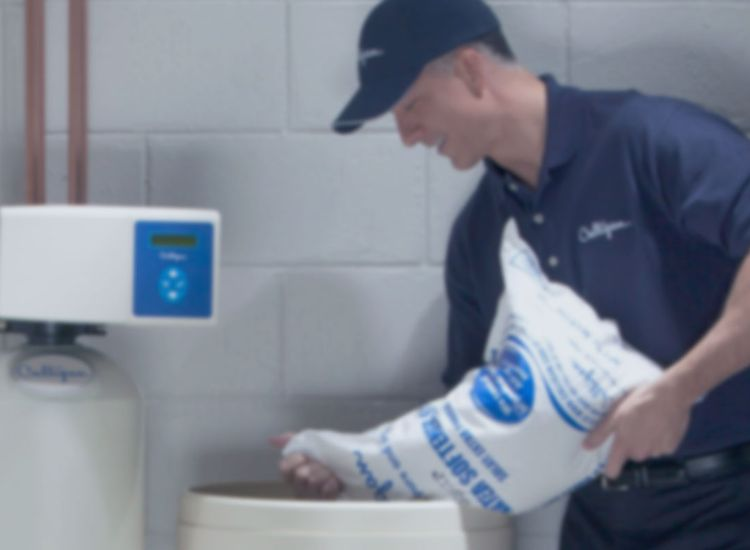 Water Softening & Purification System Installation