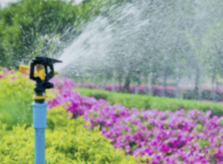 Garden Sprinkler System Installation